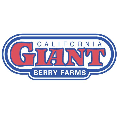 california giant berry farms logo color